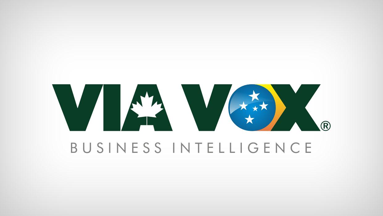 Viavox Business Inteligence